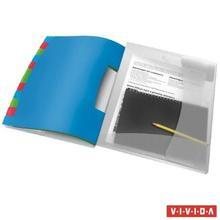 """Třídicí desky Esselte """"Vivida"""", transparentní, A4, 12 částí, plast, ESSELTE"""