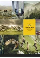 """Sešit """"Nature"""", mix, A4, linkovaný, 80 listů, SHKOLYARYK"""