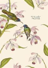 """Sešit """"Birds colour"""", různé barvy, A4, 80 listů, linkovaný, tvrdé desky, SHKOLYARYK"""