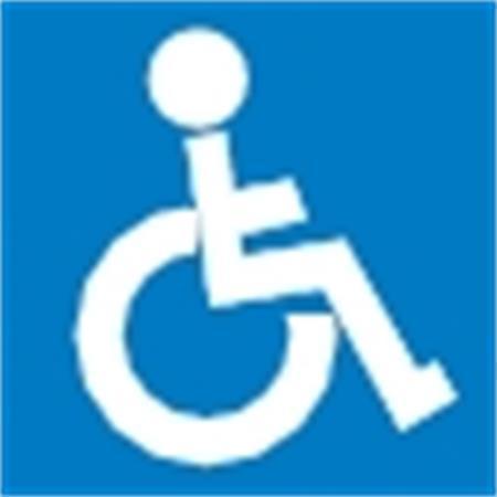 """Samolepící etiketa, """"Tělesně postižení"""", APLI"""