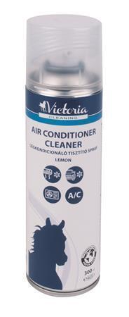 Čistící sprej, pro klimatizaci, 300 ml, VICTORIA