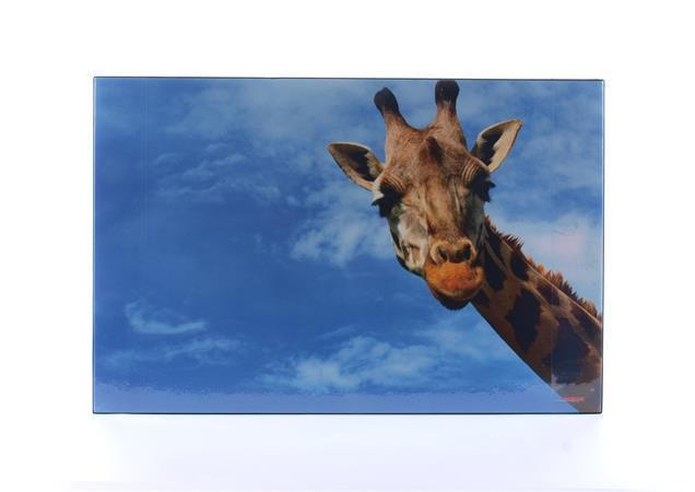 "Podložka na stůl ""Žirafa"", 580x380 mm, LS"